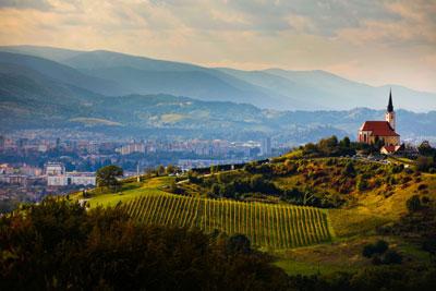 The wine region of Maribor