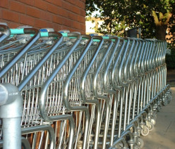 Food Stamps, Low-Income People, Junk Foods, and Shopping Carts