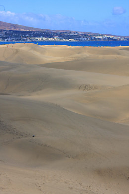 Dune after dune - one can feel alone as one walks among the rolling hills of sand
