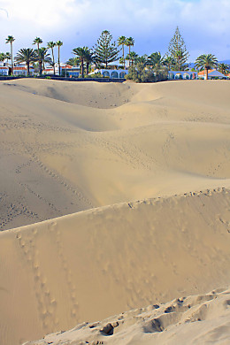 The hotels and the dunes of Maspalomas