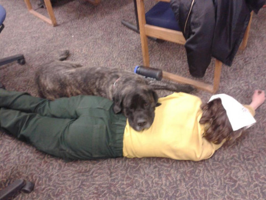 Sam and Naly take a short nap in the training room.