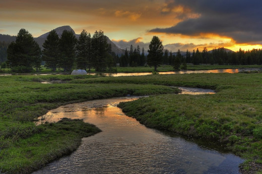Tuolumne Meadow, Yosemite National Park, California
