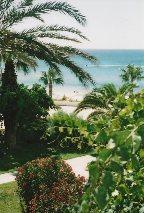 The hotels in Hammamet are largely front line beach
