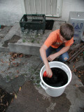 Garbage in, Garden Out, Humic Substances. Ten Ideas About Humic Substances, humic acid, etc.