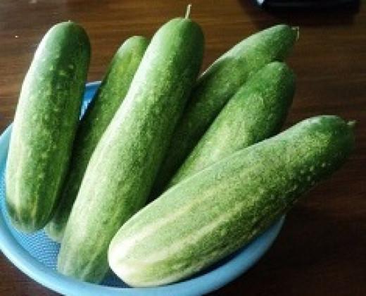 Eat cucumber instead of junks