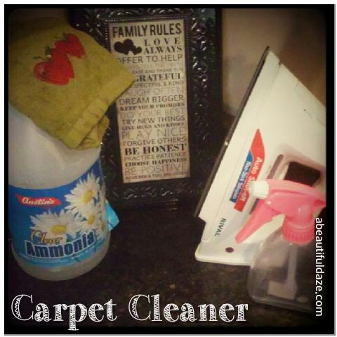 Ammonia, a rag, an iron, and a spray bottle.  Oh, and you can't forget the family rules!