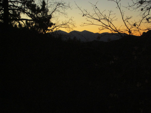 Oak tree branches are in the foreground of this mountain sunset.
