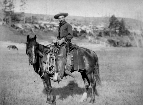 Typical cowboy circa 1887
