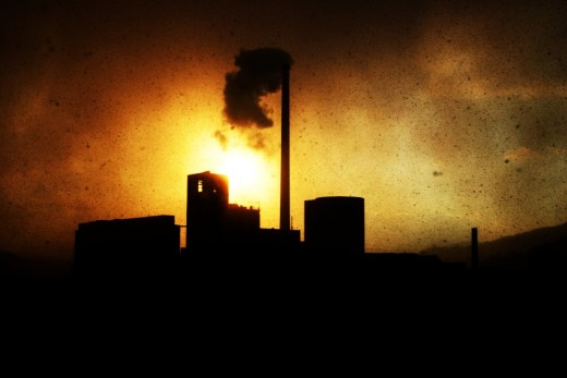Many products produce excessive pollution. This affects human health and survival as well as that of other animals.
