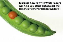 Freelance Writers Earn a Livable Wage with White Papers
