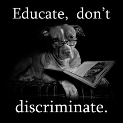 BSL (Breed Specific Legislation):  Is The Tide Turning?