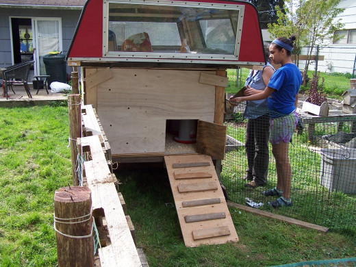 A simple chicken coop