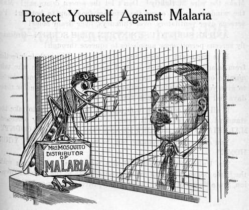 Mosquito sales woman - cartoon spreading malaria disease to homes.