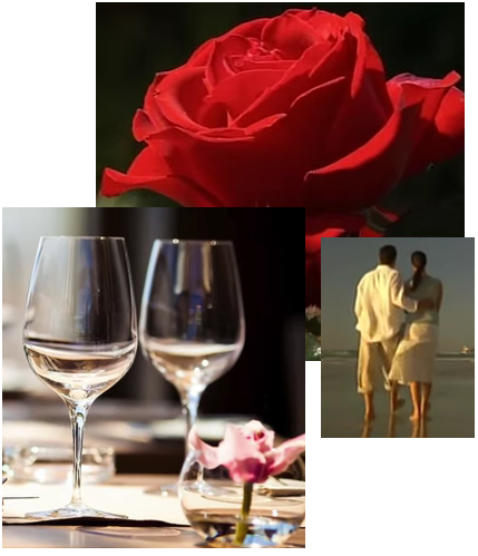 Traditional Valentines Day includes flowers, dinner and maybe a card and is for couples.