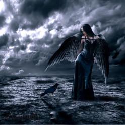 Dream Raven