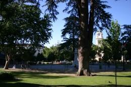 Cesar Chavez Park In Sacramento, California