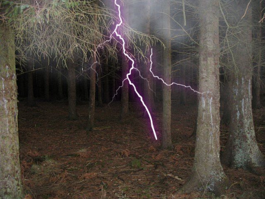 If you go down to the woods today britain 39 s haunted for Haunted woods ideas