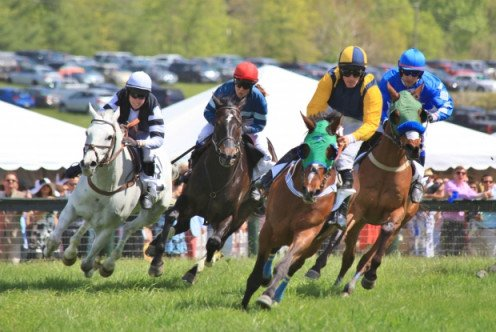 Attending a horse racing event is a fun day out.