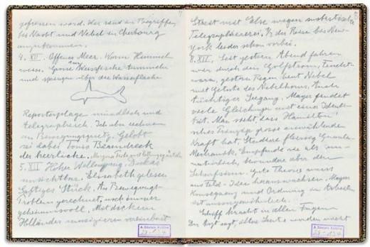Albert Einstein's diary.