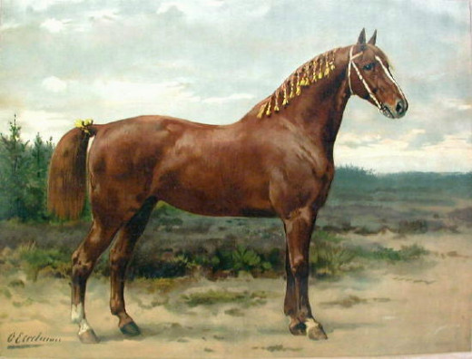 Horses have been a part of the most historic moments in history.