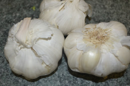 Reaearch have shown that plants from the allium family such as onions and garlic can inhibit the growth of cancer. Garlic prevent nitrites converting into harmful carcinogenic compound nitrosamines.