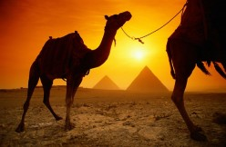 Places to see: wonderful Egypt