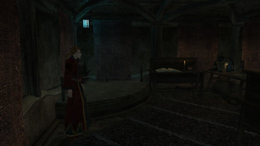 Even those who generally avoided the Mages Guild often passed through thanks to their teleportation network.