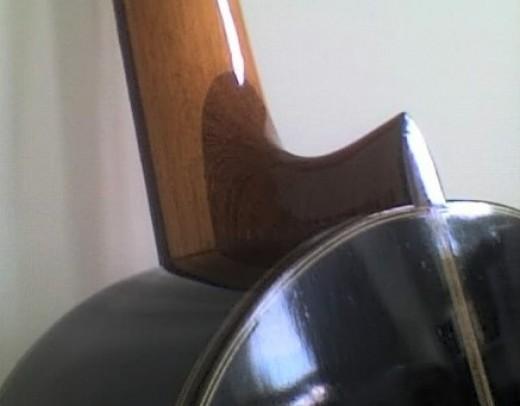 detail - body, heel & neck