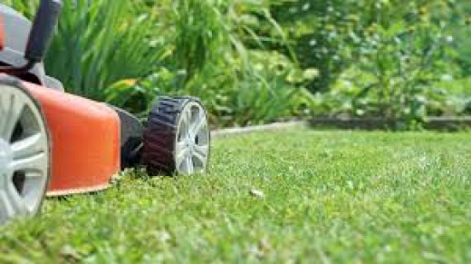 Mulch or bag grass clippings