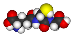 Model of the antioxidant metabolite glutathione. The yellow sphere is the radox-active sulfur atom that provides antioxidant activity. Red, blue, white and dark grey, represent oxygen, nitrogen, hydrogen and carbon atoms, respectively.