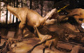 Albertosaurus - This Late Cretaceous Tyrannosaur Likely Hunted in Packs
