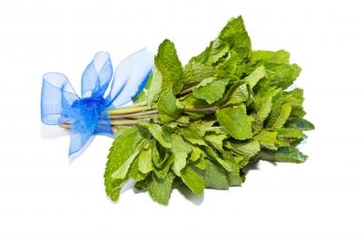 Bouquet Garni - Small bunch of herbs