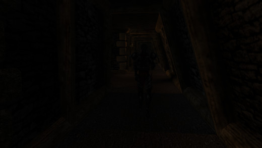 Stealth is probably the least flawed system in Morrowind, but it is by no means well done.