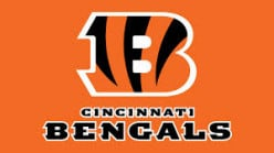 Overview of Madden Teams - Cincinnati Bengals
