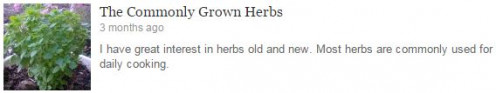 DEE's Herb Garden. The Commonly Grown Herbs http://www.amazon.com/Simple-Uses-Herbal-Indian-Spices-ebook/dp/B00N8WG434