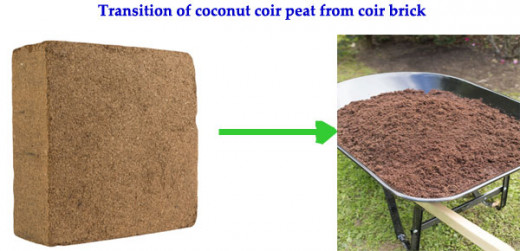Transition of Coconut coir peat from coir brick