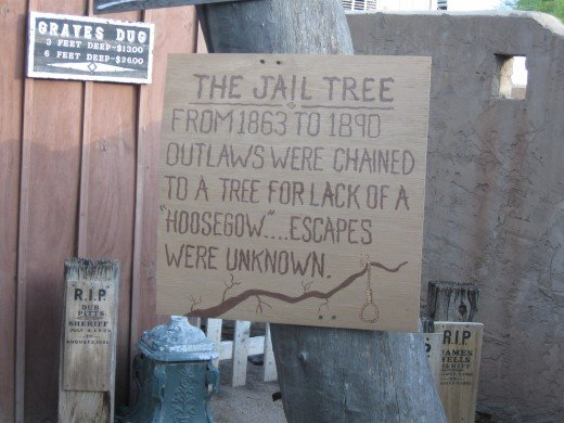 Before they built a jail, the sheriff used to simply chain prisoners to this tree.