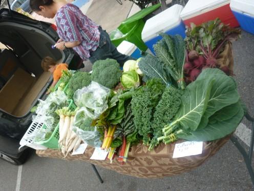 Vegetables from the Rio Grande Valley Harlingen,Texas
