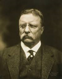 Theodore Roosevelt; 26th President of the United States, after the assassination of William McKinley. Term (1901-1909).