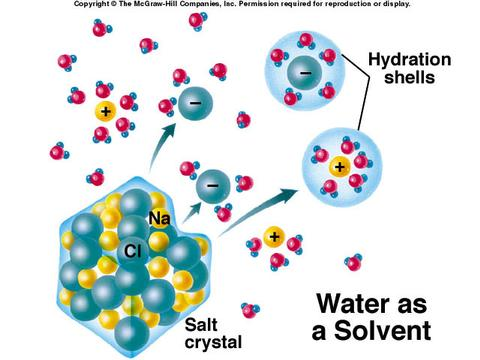 Water is a universal solvent