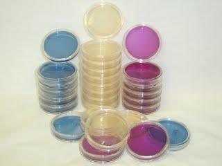 Sterile media plates: Modified m TEC, m-FC, and MEI for Enterococci