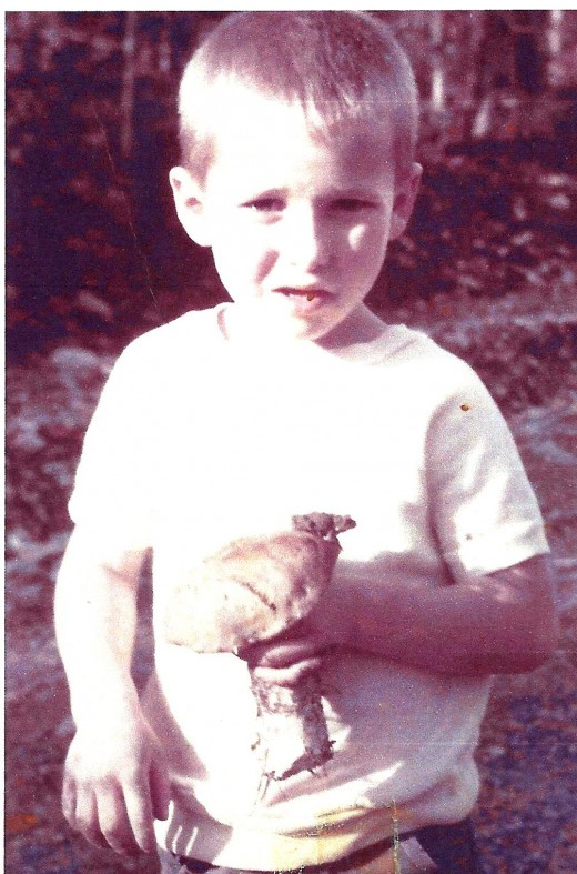 """Son Kip with boletus with toad on top. He said """"toads belongs on toadstools."""""""