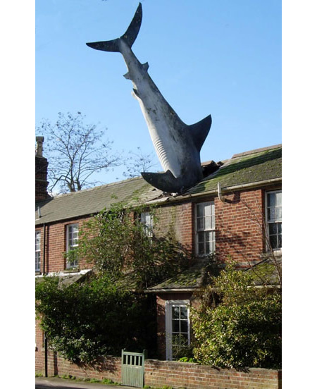 The Shark(New High Street, Headington,Oxford) became the most famous resident of Headington.The sculpture, which weighs 203 kilograms, is 25 feet long,is made of painted fibreglass;erected on the 41st anniversary of the dropping of the atomic bomb on