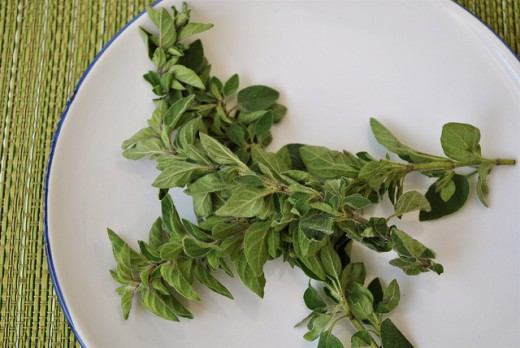 Hang sprigs of oregano over the front door of your house to stop negative energy from entering.