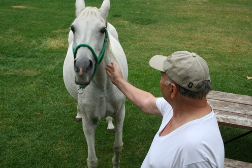 Larry petting the park horse