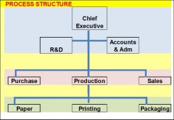 BUSINESS FORMS & ORGANIZATIONAL STRUCTURES FOR PROJECTS II