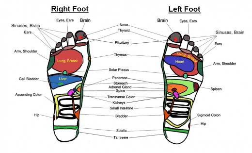 This simple reflexology chart shows how the parts of the body can be mapped out on the feet.