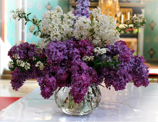 Fresh Lilac Boquet