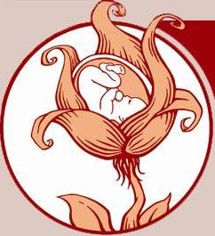 Bellingham Birthing Center Logo