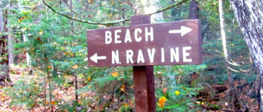 Wood sign in forest points to the Beach and N. Ravine.